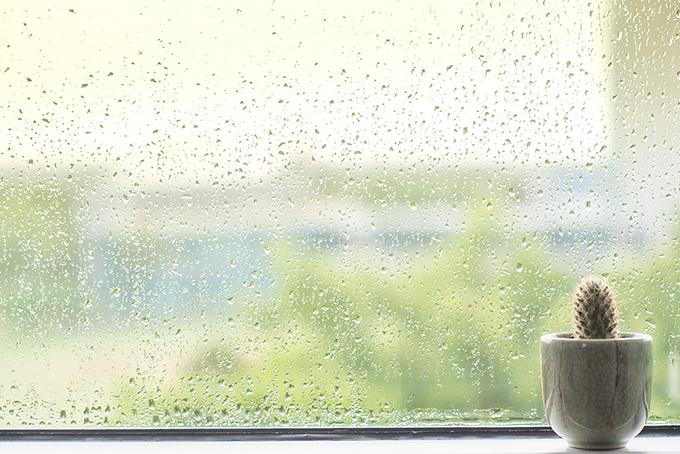 雨に濡れても大丈夫!? 封筒やはがきの防水対策